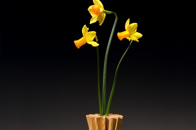 Anemone vase in ash wood is a bud vase design by Seth Rolland custom furniture